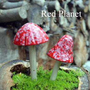 Red-Planet