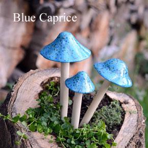 blue-+blue-cap