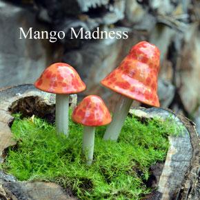 mango-madness